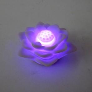Flor de lótus com luz